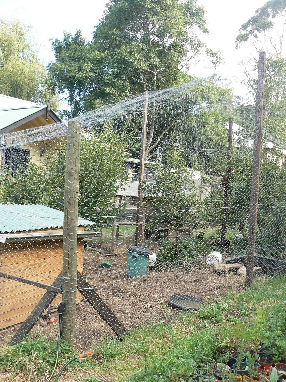 fruit tree netting